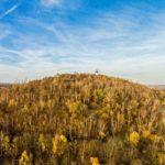 Aussicht auf das Tetraeder in Bottrop umgeben von Bäumen und Pflanzen