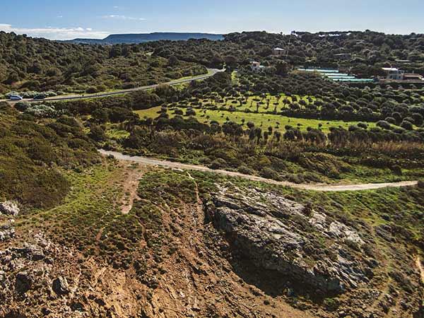Weinfelder in den Bergen von Sardinien