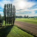 Aussicht auf grüne Felder und Wiesen