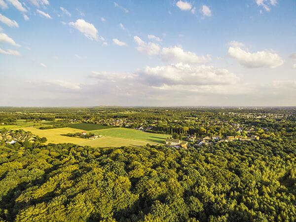 Natur Luftbilder Landschaft NRW Bäume von oben