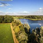 Grüne Felder und Büsche an einem See
