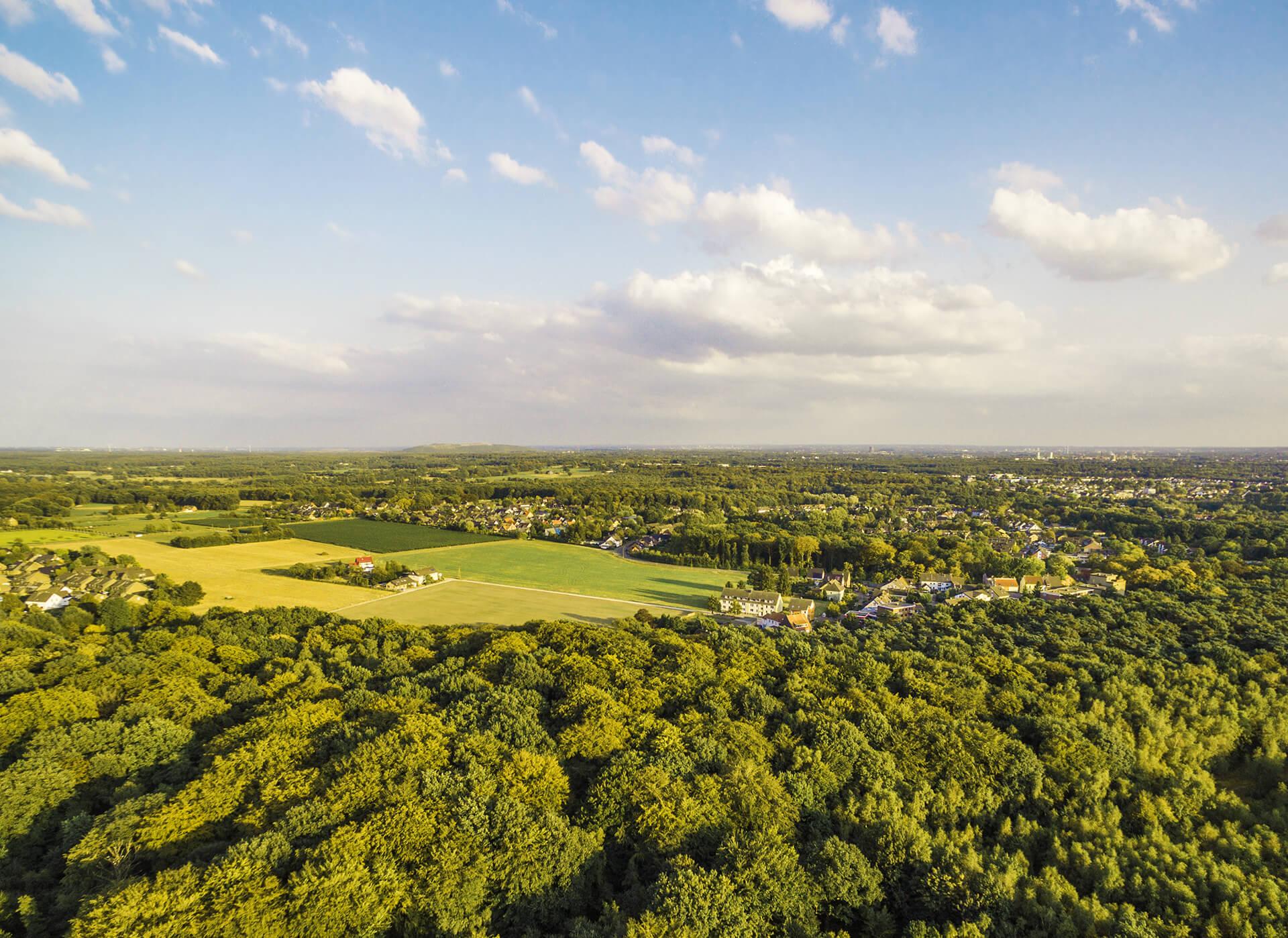 Luftbild von einer grünen Landschaft in Düsseldorf